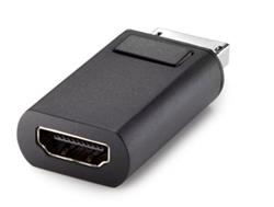 HP DisplayPort to DVI Adapter